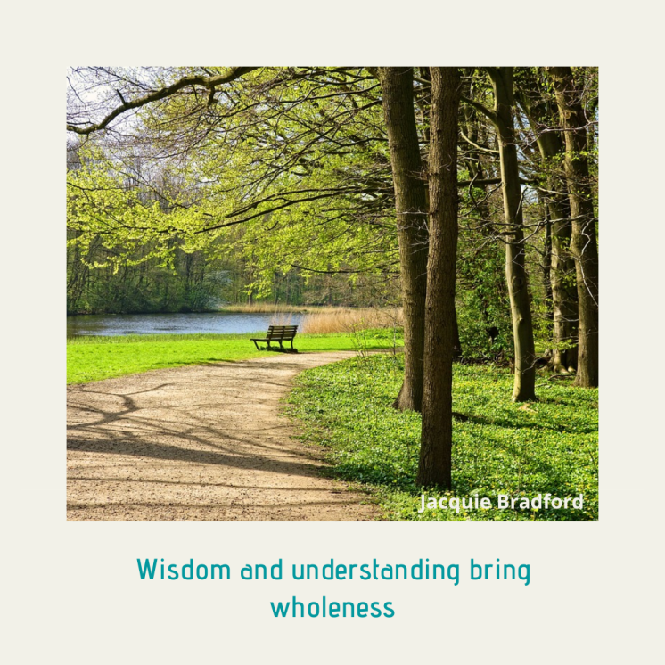 Meme_ Wisdom and understanding bring wholeness